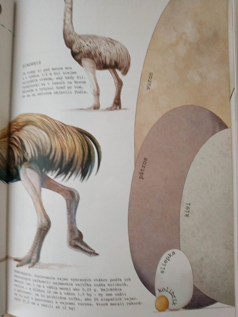 To kura je T-rex, kniha o evolucii, Charles Darwin,